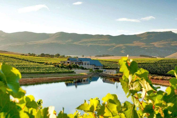 SA wine farms amongst the World's Best Vineyards 2021SA wine farms amongst the World's Best Vineyards 2021